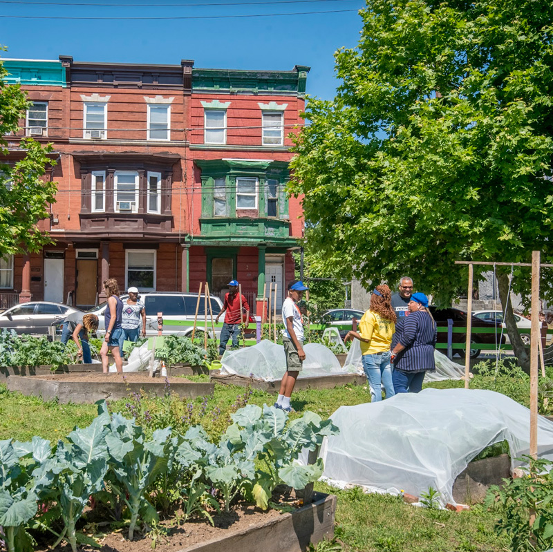 Growing A Garden Takes A Whole Community Of Individuals With Their Hands  Both In And Out Of The Soil. Tax Deductible Gifts At All Levels Helps To  Further ...