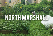 northmarshall