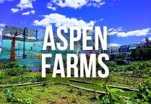 aspen_farms