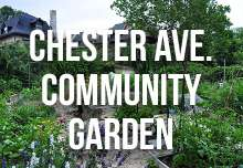 chester_ave