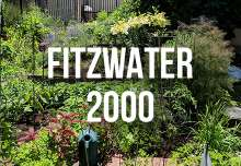 fitzwater_2000