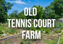 old_tennis_court