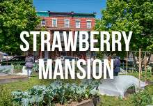 strawberry_mansion